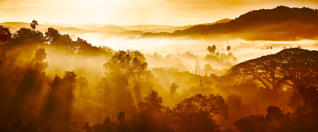 Beautiful Landscape of mountains and rainforest in early morning sun rays and fog near village Ngapali, Myanmar. Banque d'images - 116123119