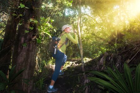 adventure, travel, tourism, hike and people concept - active tourist with backpack climbs up the hill in a beautiful lush forest in the national park Arusha, Tanzania.