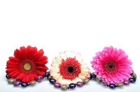 Three, beautiful, colorful, flower on a white surrounded by a beads photo