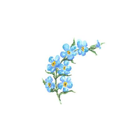 Heldere die waterverfbloem met blad op gemakkelijk voor gesneden witte achtergrond wordt geïsoleerd Stockfoto