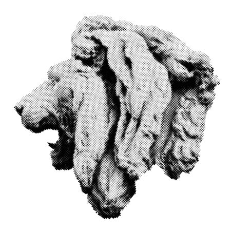 Vector Halftone Sculpture of Lion head. Universal Dotted Halftone Graphic Element for your design