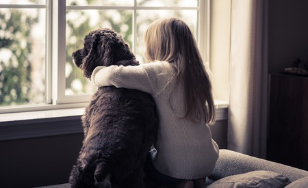 house window: Little girl and her dog looking out the window. Stock Photo