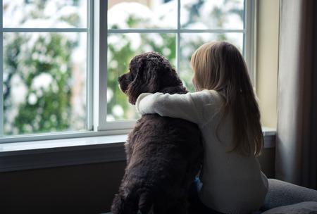 open windows: Little girl and her dog looking out the window. Stock Photo