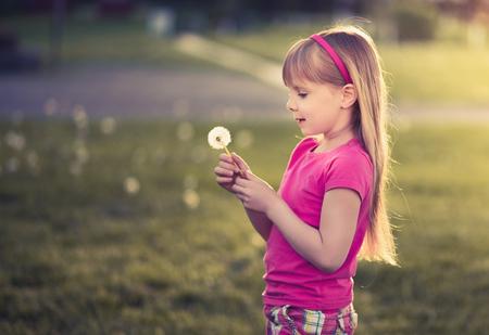 mignonne petite fille: Petite fille mignonne avec le pissenlit sur le coucher du soleil.
