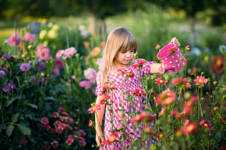 flowers garden: Small  girl  watering the flowers