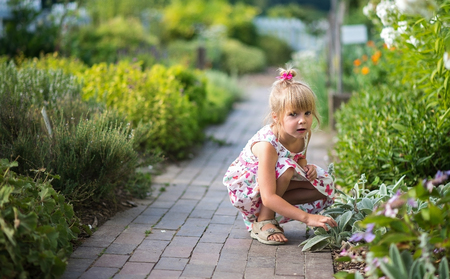 exploring: Young girl exploring plants in the garden. Stock Photo