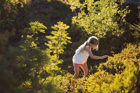 Little girl  picking berries in a forest