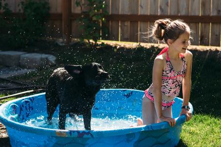 Jong meisje en haar hond spelen met water. Stockfoto