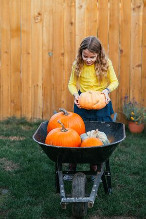 Little girl pushing a wheelbarrow full of pumpkins