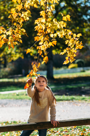 Portrait of happy little girl at the park in autumn