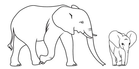 Collection of Cartoon Elephant Used for Coloring Book