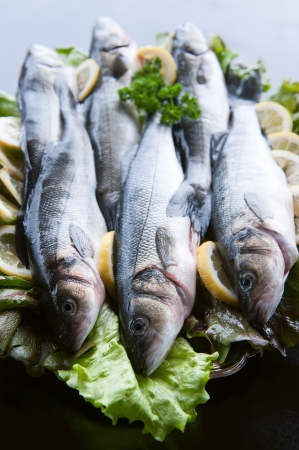 fish vendor: Fresh Fish Seabass ready to cook Stock Photo