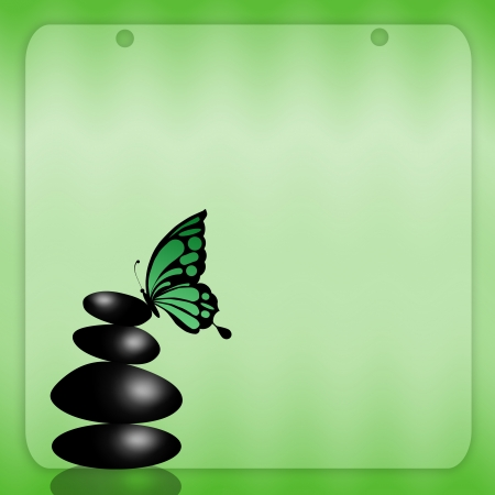 black stone with butterfly