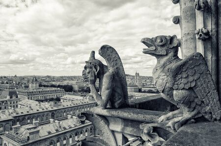 gargoyles: view from the Cathedral of Notre Dame in Paris Stock Photo