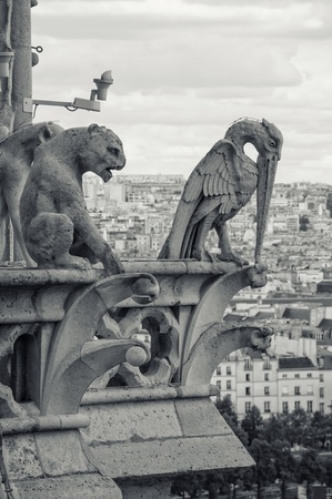 chimera: view from the Cathedral of Notre Dame in Paris Stock Photo