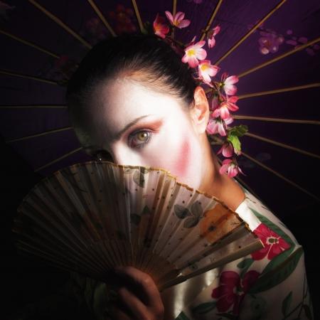 Geisha Banco de Imagens