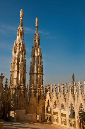 buttresses: Duomo of Milan in Italy