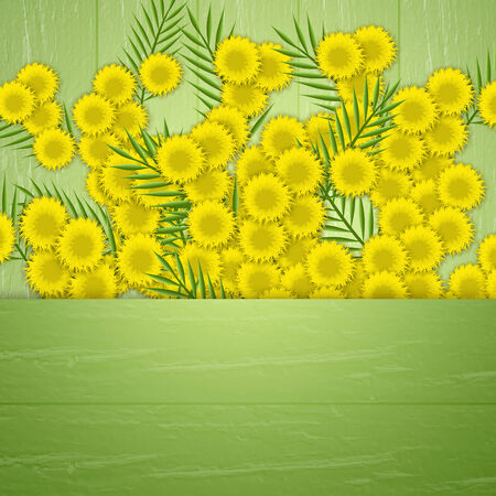 illustration of mimosa for Womens Day Imagens