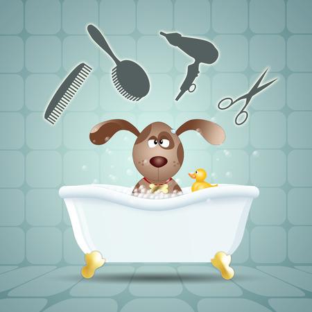 Dog groomed in bath photo