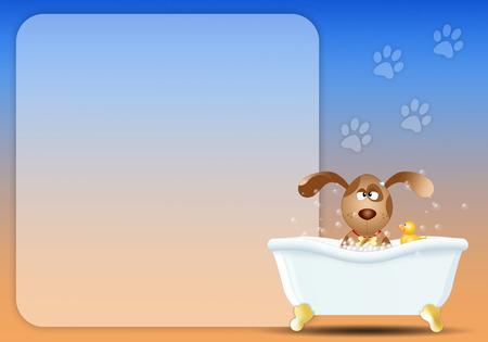 dog grooming: Dog in bathroom for grooming