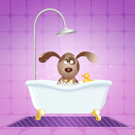 Dog in bath for grooming photo