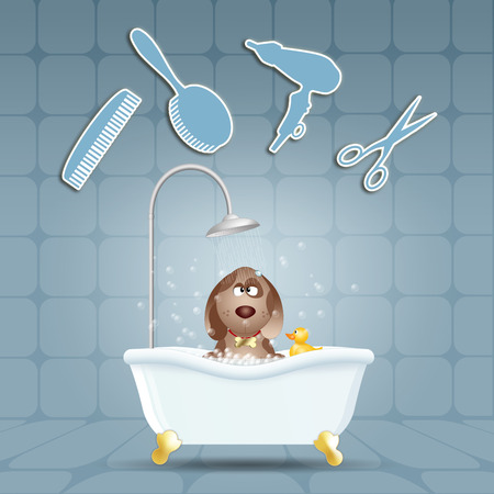 grooming: Dog in bath for grooming