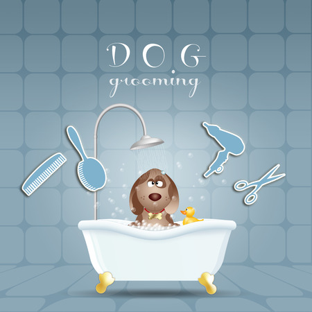Dog in bath for grooming