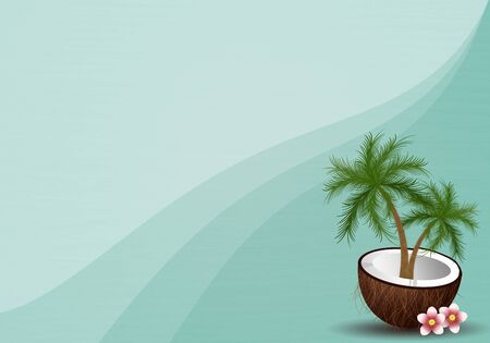 Coconut for summertime Stock Photo