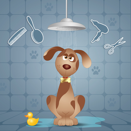 doggy: Funny doggy under the shower