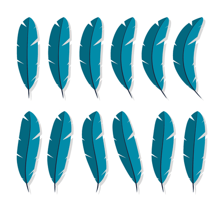 Feathers collection icon Flat characters in the style of a white background. Vector Illustration isolated element of bird wings or pen to manuscript object for your projects. Illustration