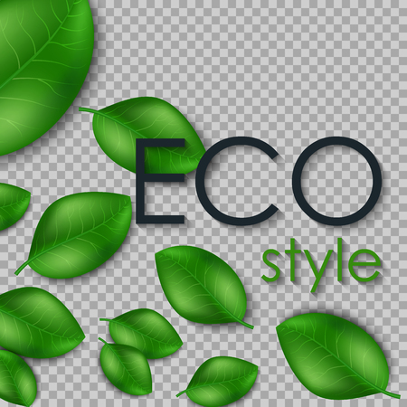 Eco the inscription of the leaves isolated on transparent background. Leaves design elements. Eco style. Ilustrace