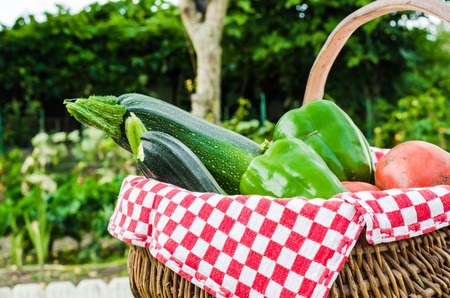 the vegetable of kitchen garden in a basket