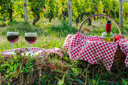 an glass of red win, burgundy, france, season summer, color, september photo