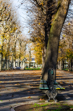 burgundy: Vichy, France, Burgundy, public park in automn, vertical, color Stock Photo