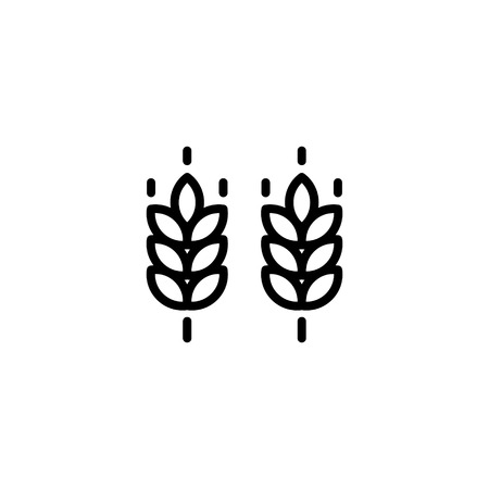 Vector farm wheat ears icon template. Line whole grain symbol illustration for organic eco business, agriculture, beer, bakery. Gluten free background