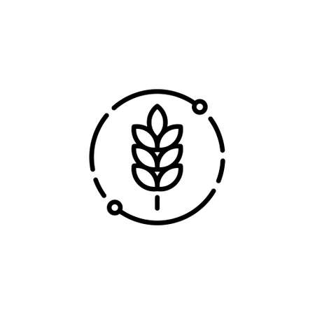 Vector farm wheat ears icon template. Linear whole grain symbol illustration. Simple oat growth design concept. Farm agriculture oat cycle sign