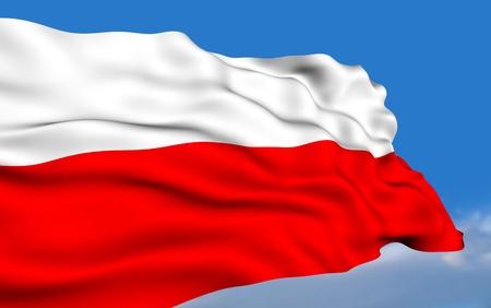 bandera de polonia: Bandera de Polonia