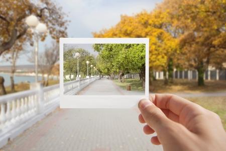 Holding Instant photo on a autumn background  Standard-Bild