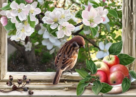 closeup: Sparrow on a background of old windows and apple blossom