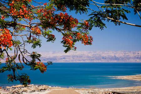 Vista del Mar Muerto de Israel