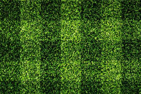 Grass Checkered
