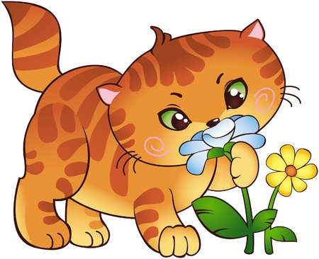 Kitten and flowers Stock Vector - 8912585