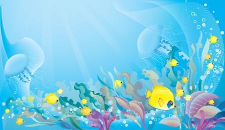 pez disco: Fondo de mar tropical con copyspace