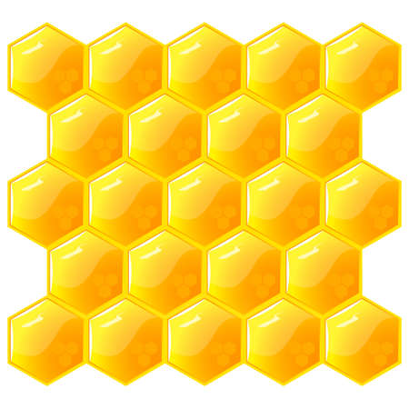 wax glossy: Honeycomb, isolated on the white.  Illustration