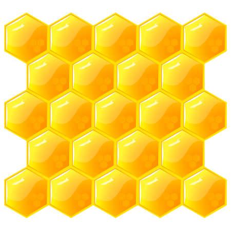 abejas panal: Panal, aislado en el blanco.