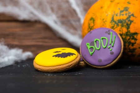 pumkin: Halloween homemade gingerbread cookies and pumkin with with spiderweb background. Shallow depth of field.