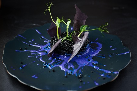 italienisches essen: Plate with black risotto on black background with dramatic side light. Haute cuisine.