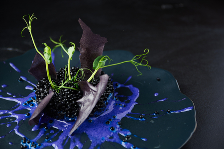 Plate with black risotto on black background with dramatic side light. Haute cuisine.