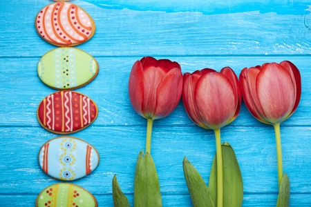 middle easter: Easter cookies background. Red tulips in the middle and a half of eggs cookies from left side on a blue wooden background. Top view.