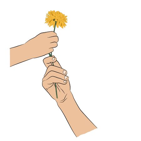 reconciliation: Two hands with flower  on white background. Greeting card, invitations.